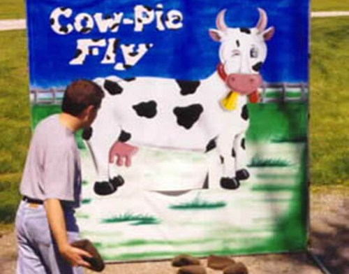 Cow pie fly